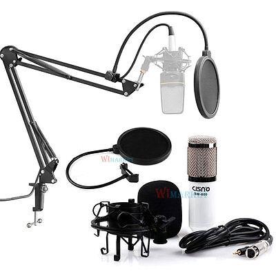 Condenser Microphone Professional Studio Sound Recording W/Boom Stand Pop Filter
