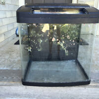 14 Gallon Bio Cube with built in LED's for coral Growth