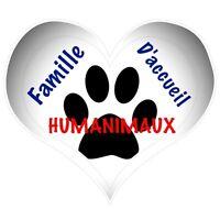 2 places disponibles famille d'accueil pour chiens à Laval