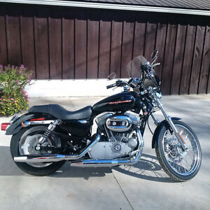 Harley Sportster 883 for Sale!!