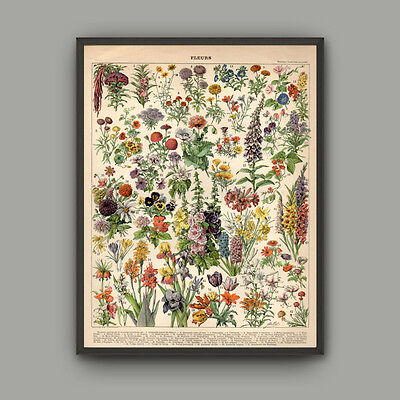 Canvas Print Flowers Landscape Making Wall Art Botanical Home Decor Pictures