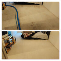 STEAM CARPET CLEANING +SHAMPOOING + STAIN REMOVAL AS LOW AS $59