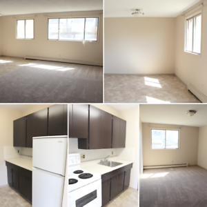 Short Term Summer Apartments Available On Grant Ave Apartments