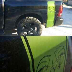 Vehicle decals and stripes Windsor Region Ontario image 3