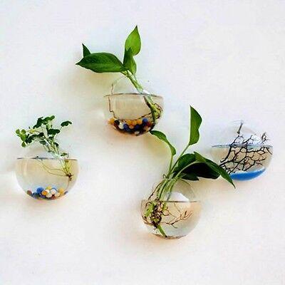 Hanging Plant Flower Glass Ball Vase Terrarium Wall Fish Tank Aquarium Decor CA
