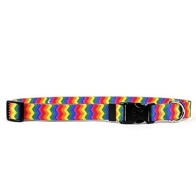 - NEW Rainbow Dog and Cat Collar or Leash in Chevron Stripe by Yellow Dog Design