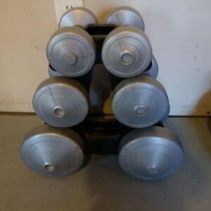 Set of plastic dumbbells ( 2,5, 5, 10 lbs)
