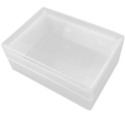 Clear Honey Lattice Produce Box Bee Hive Frame Beehive Beekeeper Tool Equ XXS