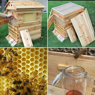 7pcs Newest Flowing Honey Hive Beehive Framesbeekeeping Brood Cedarwood Box Set
