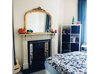 Beautiful room in a cosy terraced house