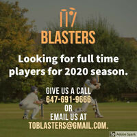 Cricket players needed for season 2020
