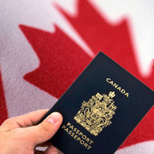 Immigration Services by Professional Consultants