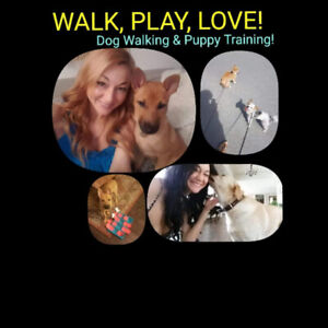 PUPPY TRAINER VANCOUVER   DOG WALKER!  $15