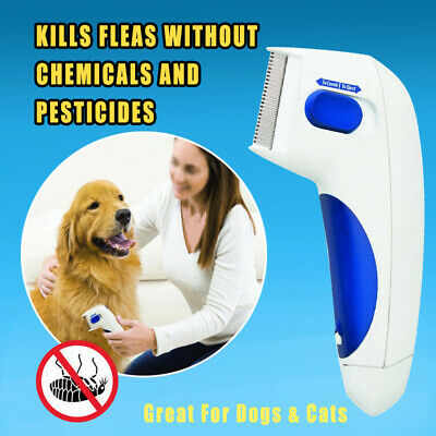 Flea Doctor Electric Dog Comb Brush for Pets Lice Remover Anti Flea Control Head