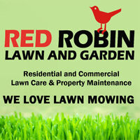 Best Lawn Mowing / Lawn care in Cornwall
