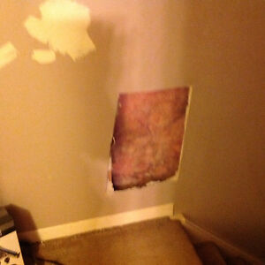 Looking for free drywall