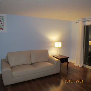 FURNISHED 2 BEDROOM APARTMENT DUPLEX IN MASONVILLE London Ontario image 1