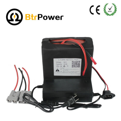 36V 10Ah 20Ah Lithium lifepo4 Ebike Battery Pack For ≤900W Bicycle Motor + BMS