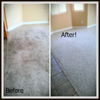 Steam Cleaning Carpets/Tiles/Stoves/Windows and much more
