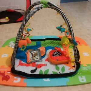 Infantino Baby / Toddler Activity Gym