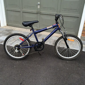 "Boys Raleigh Rave beginner trail bike (20"" tires)"