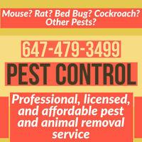 LICENSED PEST CONTROL MOUSE, RAT, ANT ROACH BED BUG EXTERMINATOR