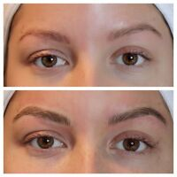 MICROBLADING REFRESHER WORKSHOPS & MICROBLADING HD OMBRE FADE