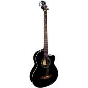 NEW ACOUSTIC BASS WITH CUSTOM TRAVEL CASE & Free Delivery