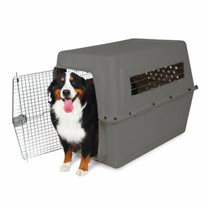 GIANT IATA APPROVED DOG CRATES