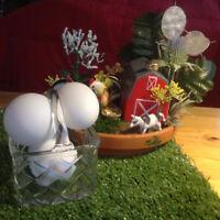 EGGS - Farm Fresh $3.50doz (cage free hens)