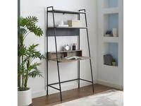 Wayfair Pettit Ladder Desk and Bookshelf