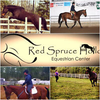 Horse Boarding, Training, Lessons