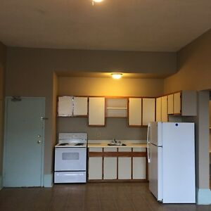 Large Downtown 2 Bedroom