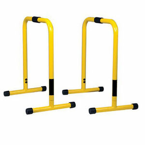 Lebert Equalizer exercise stands