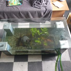 Fish Tank Table For Sale Aquariums Gumtree