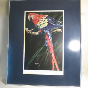 Signed Numbered Barry Barnett Tropic of Vedra Macaw Parrot Kitchener / Waterloo Kitchener Area image 2