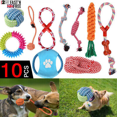 10 TOUGH DOG PUPPY PET TOY ROPE BUNDLE TEETH CHEW KNOT BALL COTTON ROPE TOYS KIT