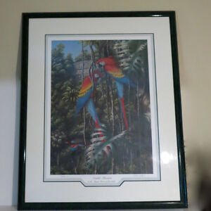 Limited Edition Picture Print Scarlet Macaws 58/500 F.P. Bennett Kitchener / Waterloo Kitchener Area image 2