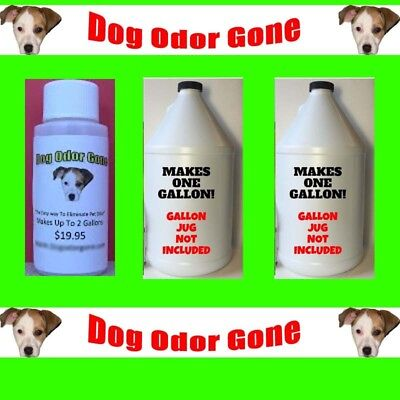 Dog Odor Gone - Industrial Strength Pet Odor Remover 1oz Makes 2 Gallons