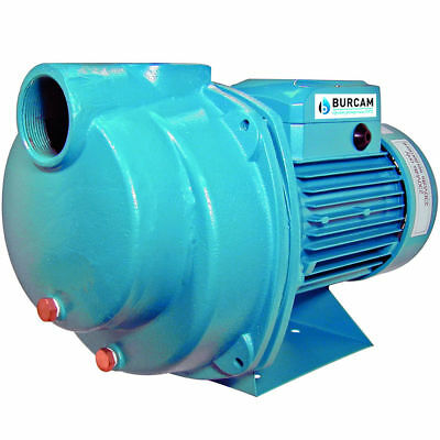 Burcam Pumps 80 Gpm 2 Hp Cast Iron Lawn Sprinklerirrigation Pump
