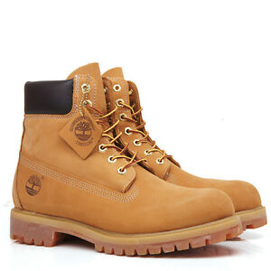 Timberland 6 in Wheat