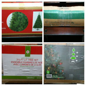 Variety Of Indoor Christmas Trees