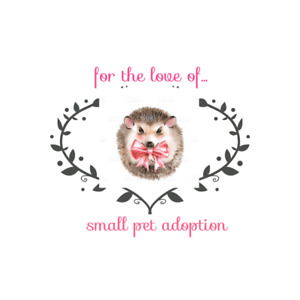 For the love of in relation with the LITTLE BEAR FOUNDATION FUND