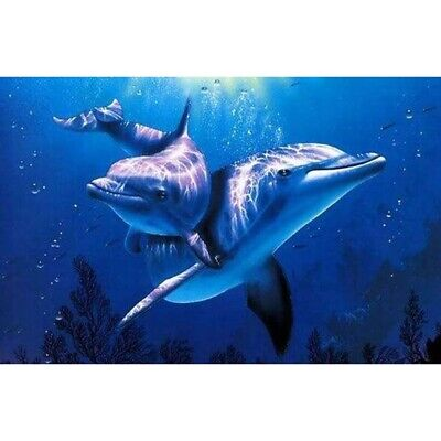 Frameless DIY Dolphins Abstract Digital Oil Painting Art Picture Set Home Decor  - Frameless Oil Painting Set