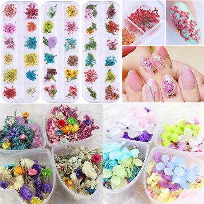 Gemischt 3D Trocken Blumen Nagel Kunst Dekoration Dry Flower Nail Stickers Decal ()