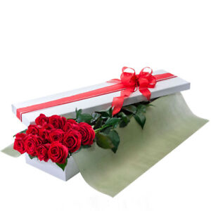 VALENTINES DAY - Beautiful Long Stemmed Red roses