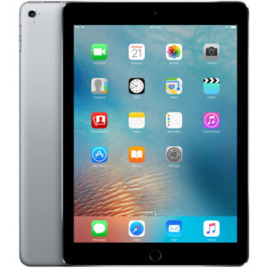 iPad Pro 9.7 Space Gray ~ 256 GB ~