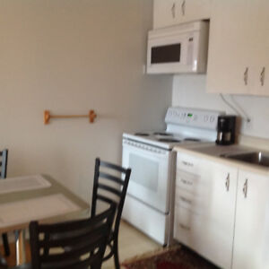 One bedroom condo close to kingston hospital ,college,university