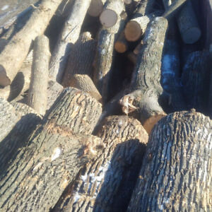 6 Bush Cords MIXED  Firewood Logs  $600 DELIVERED
