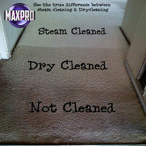 Professional Carpet Cleaning Specials Kawartha Lakes Peterborough Area image 1